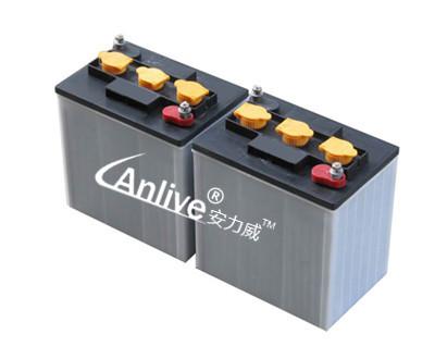6v电动汽车蓄电池